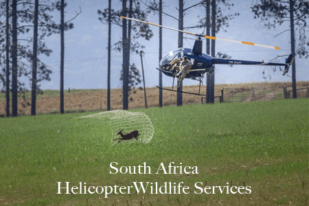 Helicopter Wildlife Services South Africa