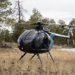 MD500 on net gun capture New Mexico.