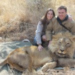 Lion Capture Namibia