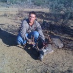 Whitetail Deer Capture Mexico