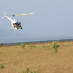 Reedbuck Capture South Africa