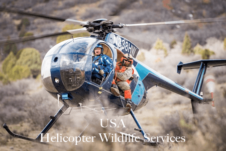 USA Helicopter Wildlife Services
